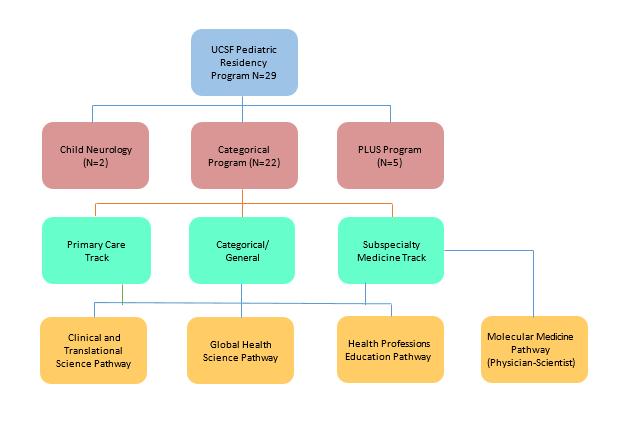 Programs, Tracks and Pathways   Department of Pediatrics